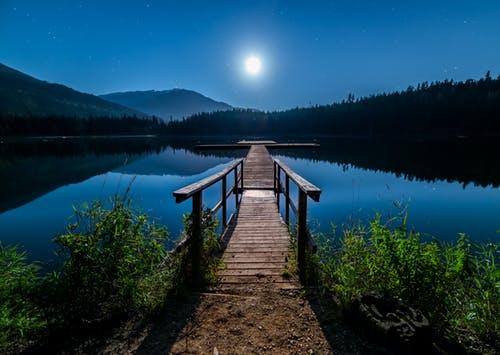 Manifestation of Bridge at Night